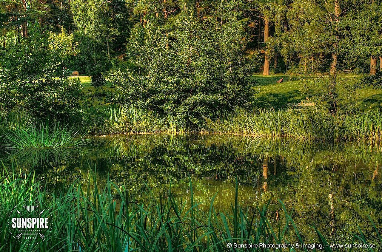 Midsummer evening...