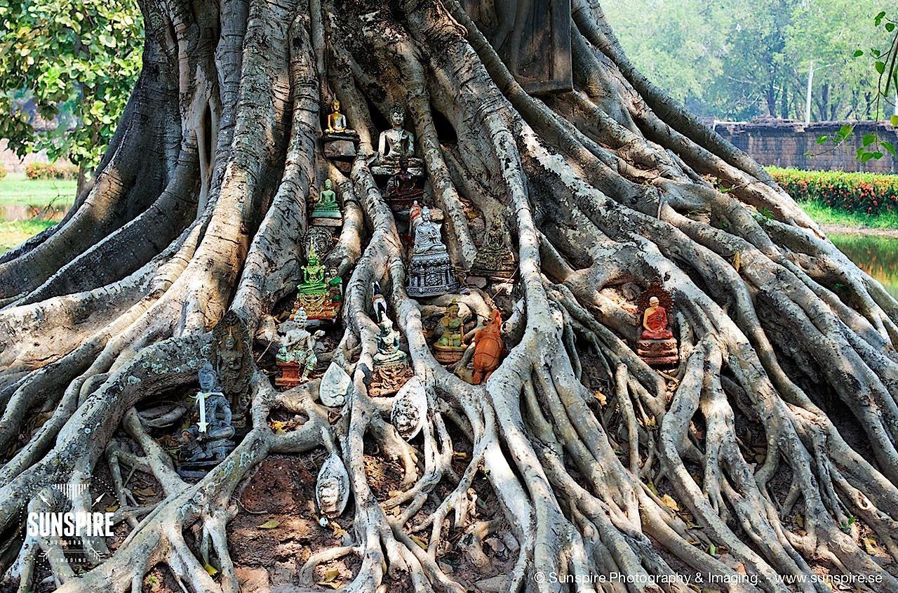 Sukhothai Historical Park, Thailand 2
