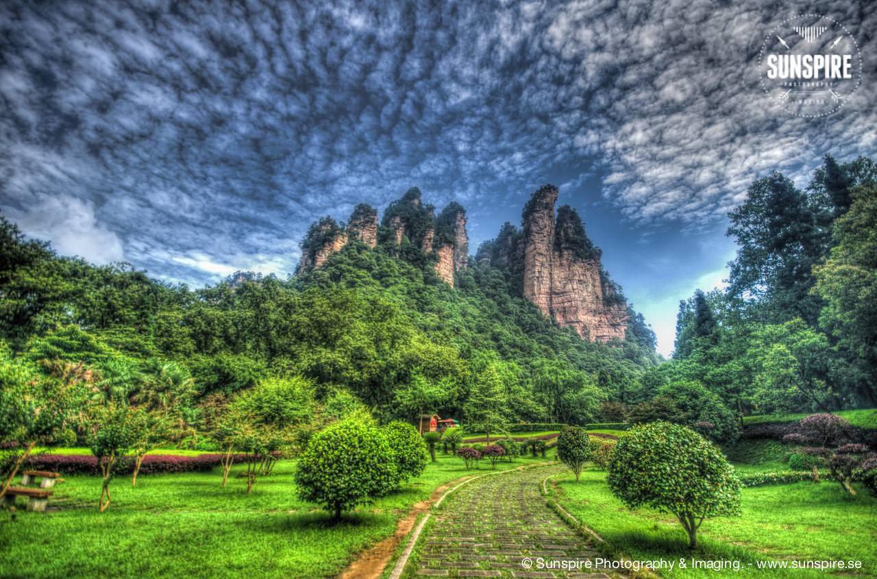Zhangjiajie National Forest Park 16